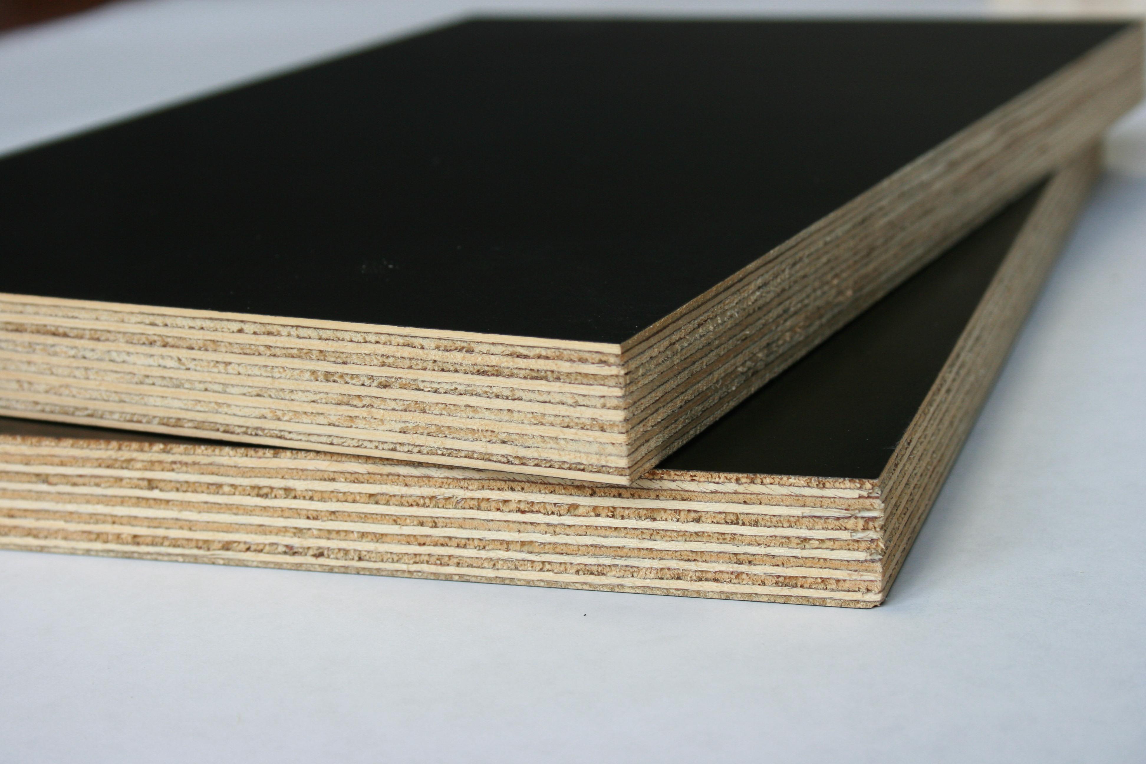 Film-faced poplar plywood
